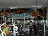 GIMNASIO CAROLS GYM