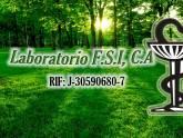 LABORATORIO F.S.I, C.A.
