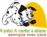 4 PATAS E CAUDAS A ABANAR