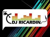 DJ RICARDIN