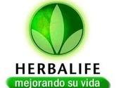 Distribuidor Herbalife en Reynosa Mcallen Mission edinburg