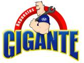 REPUESTOS GIGANTE CARTAGO