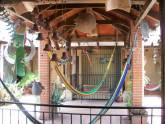 HOTEL POSADA DEL CENTRO, Hotel en Juticalpa Olancho