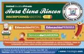U. E. Aura Elena de Rincón