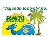 FLAVIO EXCURSIONES