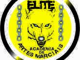 Academia de Artes Marciais ELITE