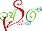 ASOCIACION DE BAILARINES DE SALSA DE CALI