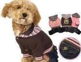 Tienda de ropa y accesorios mascotas en Chile CHILEMASCOTAS