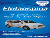 FLOTA OSPINA servicio de transporte terrestre de pasajeros