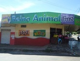 PET SHOP REINO ANIMAL